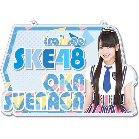 SK-147-1608-22891_p01_500