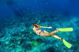 水中写真1
