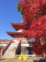 �大覚寺4