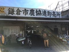 �鎌倉市場