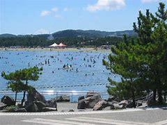 �海の公園