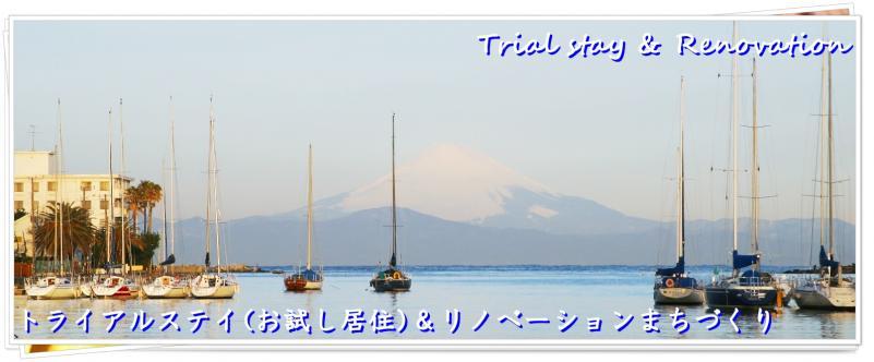 miura_173_s1[1]