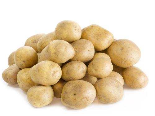 岡山の小学生10人がジャガイモを使った調理実習で食中毒