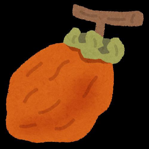 なぜばあちゃんは俺が大嫌いな干し柿を毎年作り続けるのか