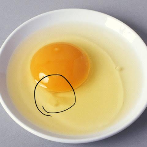 卵食う時あの部分取り除くやつおる?