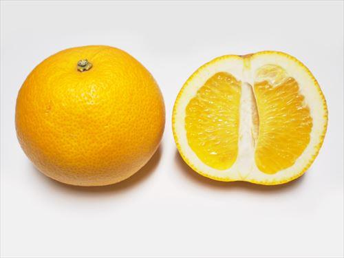 はっさくってかなり美味い果物なのになぜか話題にあがることないよな