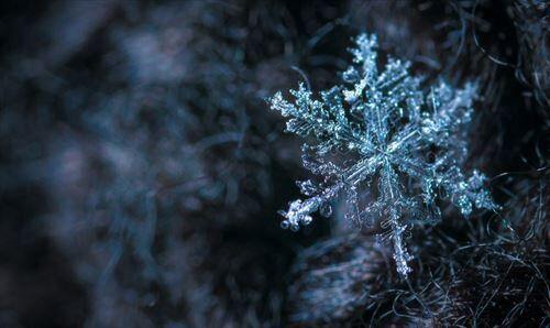 冬とかいうゴミみてえな季節が1年で最も長いクソ調整