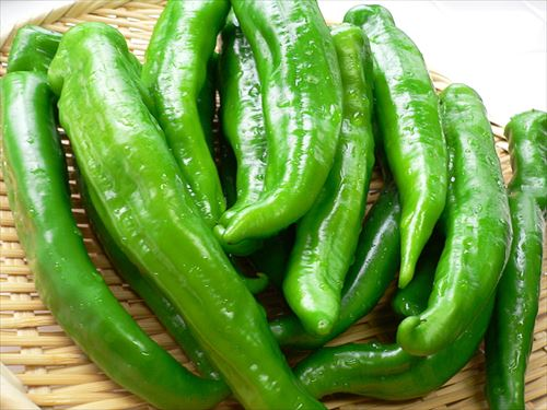 Manganji_green_pepper_by_yomi955_R
