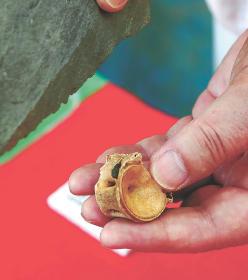 縄文人もマグロ好き? 5500年前の貝塚から解体された跡のある大量の骨