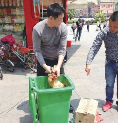 駅で生きた鶏の持ち込み乗車を拒否された青年、その場で〆て無事乗車