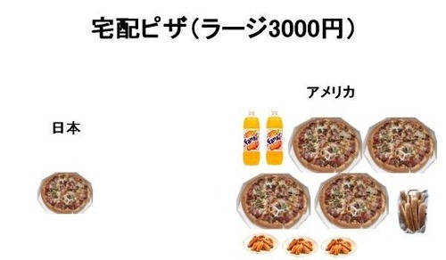外国人「日本のピザ高すぎwwwwwwwwww」