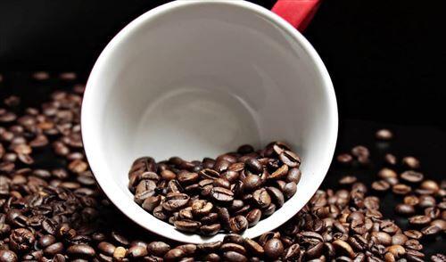 コーヒー好きな奴って、やっぱり苦いとは思ってて飲んでるんだよな?