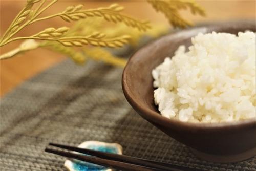 日本人特有のおかずを口に入れつつ白米を口に含む←冷静に考えると気持ち悪いよな…