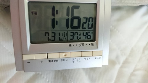 ワイの部屋37℃を記録してしまう……