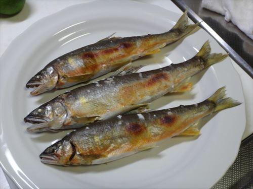 いい歳して気づいたが魚を買ったことが無い