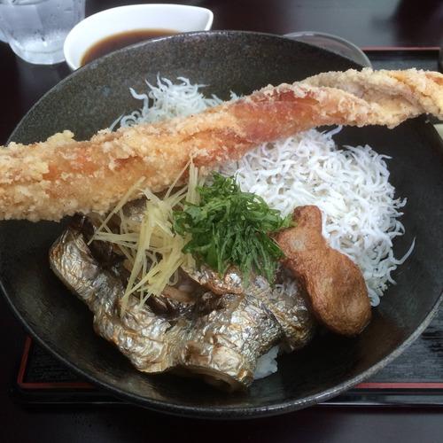 旅行で和歌山に行くんだがこれだけは食べとけってのある?