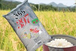 お前らおすすめの米教えろください