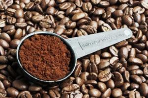 ひょっとしてカフェインって最凶の薬物やないか?