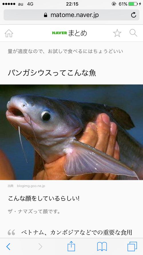 彡(^)(^)「この白身魚のムニエルうまかったなぁ...ん?パンガシウス?」
