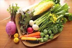 面接官「自分を野菜で例えると何ですか?理由も添えてお答え下さい」