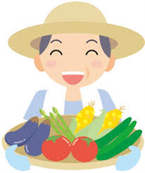 農家ぼく、3月4月の繁忙期に震える