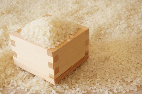 なぜ欧米人はパンが主食なのか? 米の方が手軽に調理できて美味いのに