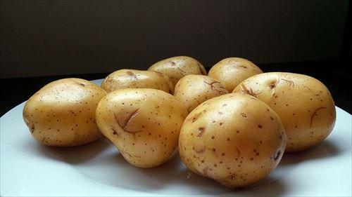 【急募】大量のジャガイモの使い方
