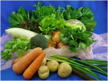 野菜が甘い=うまいみたいな風潮