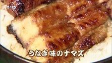 ナマズの蒲焼き美味しそうじゃん。