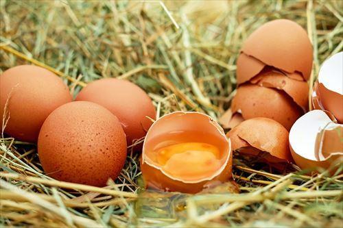 「生卵」って恐ろしいよな
