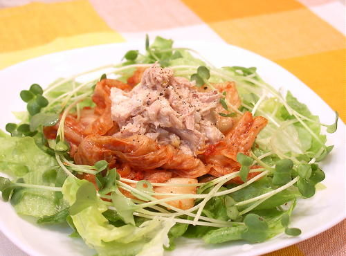 tuna-sarada01