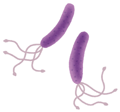 ピロリ菌に99%感染してるんだがどうすればいい?