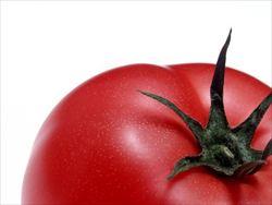 トマト嫌いな奴って何が嫌なの?味なの?