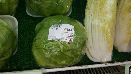 キャベツ650円、白菜650円、レタス1350円wwwwwwwwwwwwwwww
