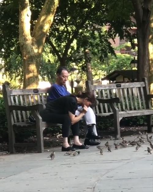 アメリカの公園で突然スズメを捕獲する中国人夫婦 ビニール袋に入れてお持ち帰り