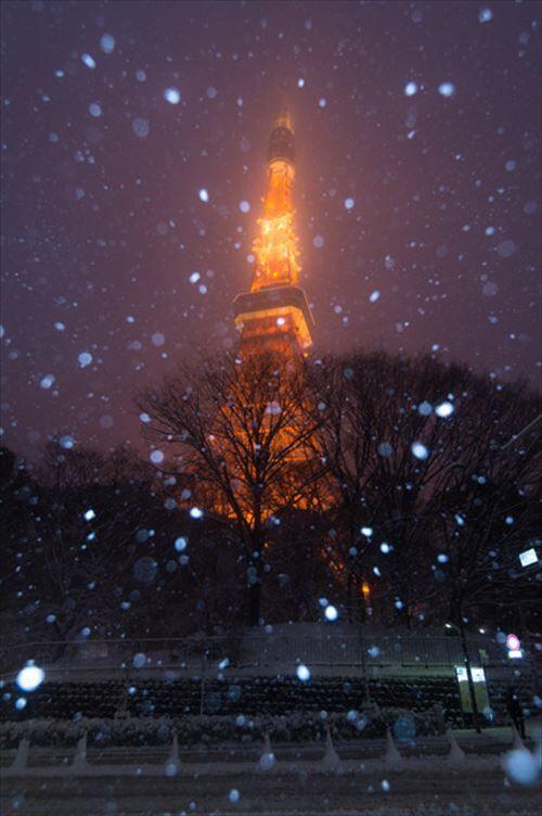 東京民「霧が出た!」「イノシシが出た!」「寒い!ちょっと雪降った!」