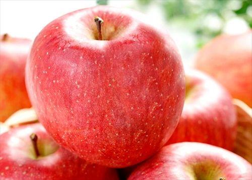 【青森】リンゴ1万5000個盗まれる