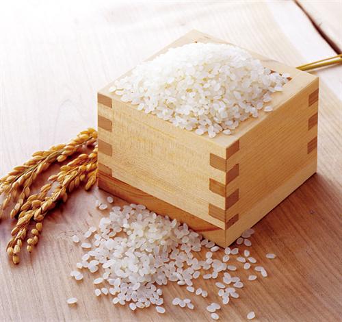 お前ら虫が湧いたお米食べることできる?