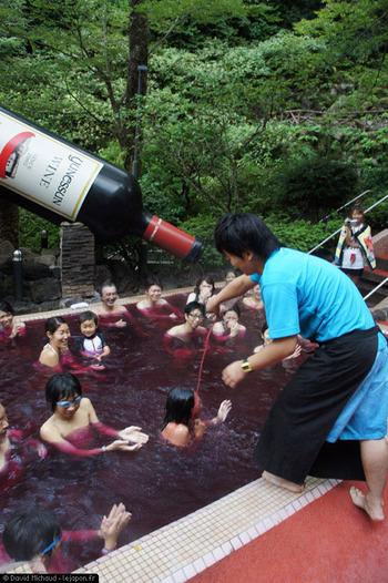 フランス人 「日本人がボジョレーを風呂に使っとる…もし俺らが日本酒風呂したら日本人はどう思うよ?