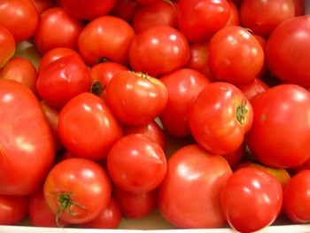 """本場スペインの""""トマト祭り""""を東京で開催 トマト量は本場と同じ 参加費2500円"""