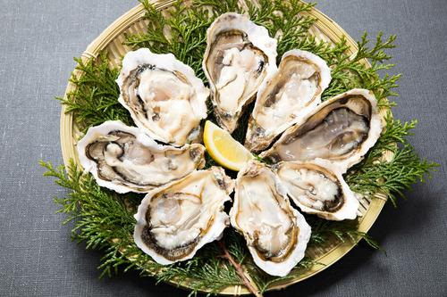 生牡蠣ってリスク負ってまで食うほど美味いもんなんか?