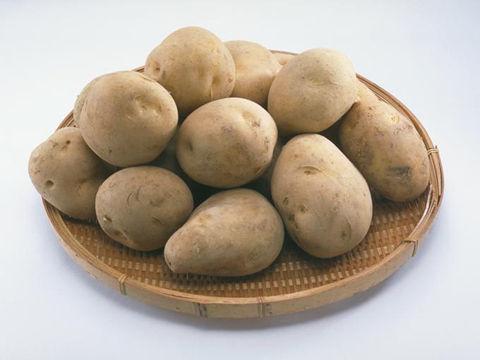 白菜・ジャガイモの価格が去年の2~1.4倍 夏も野菜高値に