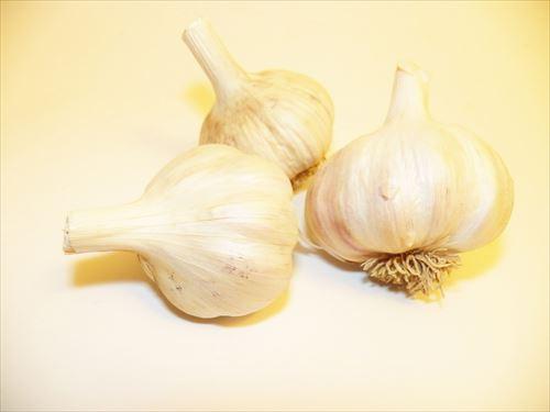 garlic_R