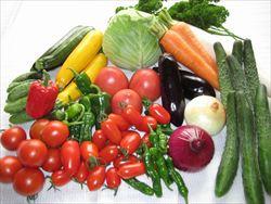 野菜の栄養価、昔と今ではこんなに違う!? ほうれん草の栄養価は1950年の5分の1に