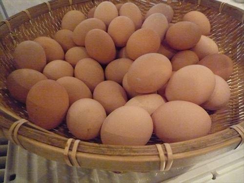 筋トレ民「一日タマゴ5個食え!!」←不可能すぎて草