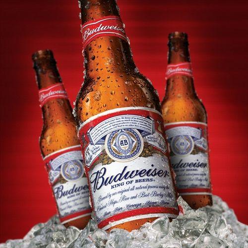 バドワイザーってビール初めて飲んだんだけどwwwwwwwwwwwwwww