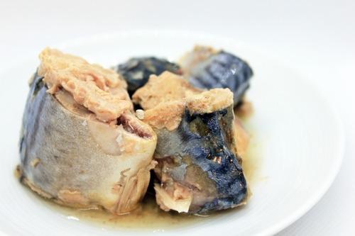『鯖缶』とかいう万能食材に見せかけてそのまま食べる以外のまともな食い方がない缶詰