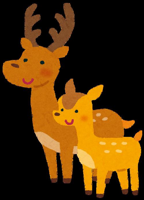 ワイ「鹿せんべい食うか?」鹿「うん」モシャモシャ