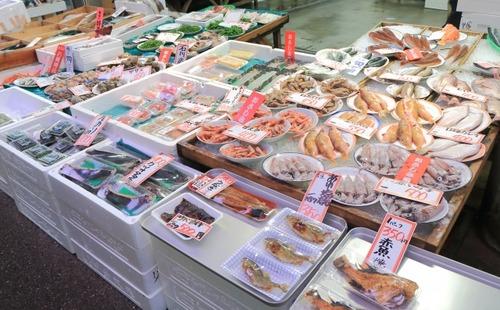 ヤクルト奥川「東京の魚は高くて手が出ない。石川に帰ったらいっぱい食べたい」
