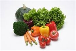 年収高い奴ほど野菜を食べる傾向にある